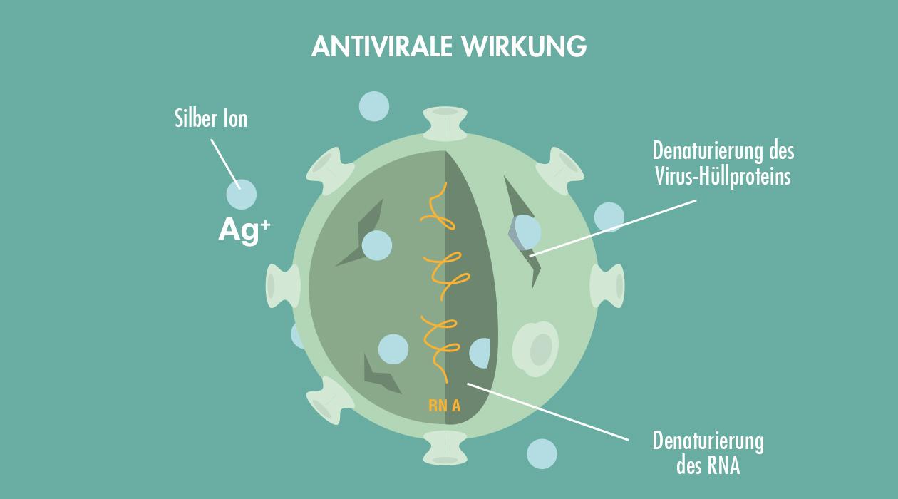 GASTROBACK® Luftreiniger mit AG+ Antiviral Technology - Antivirale Wirkung