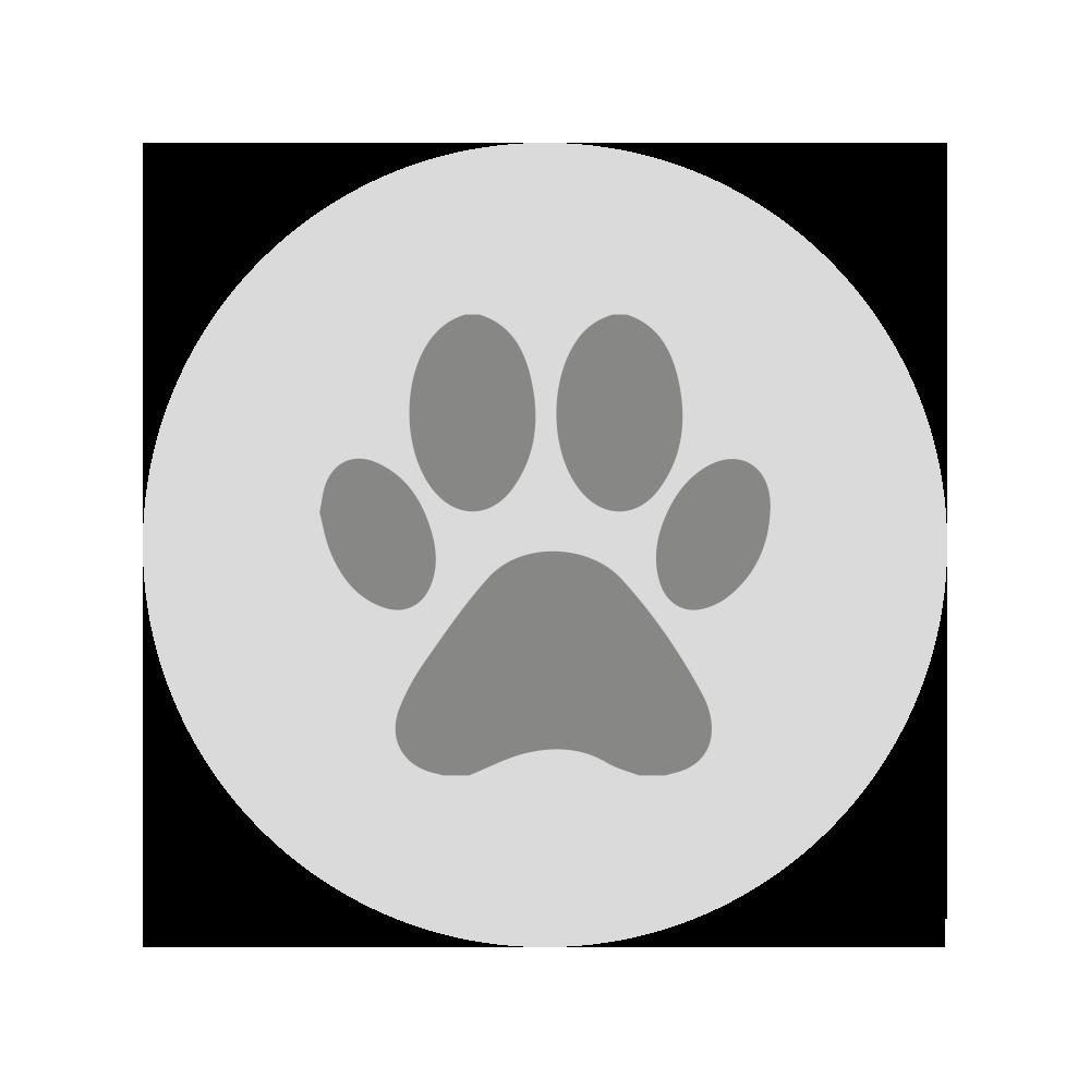 GASTROBACK® - Entfernt effektiv - Tierschuppen