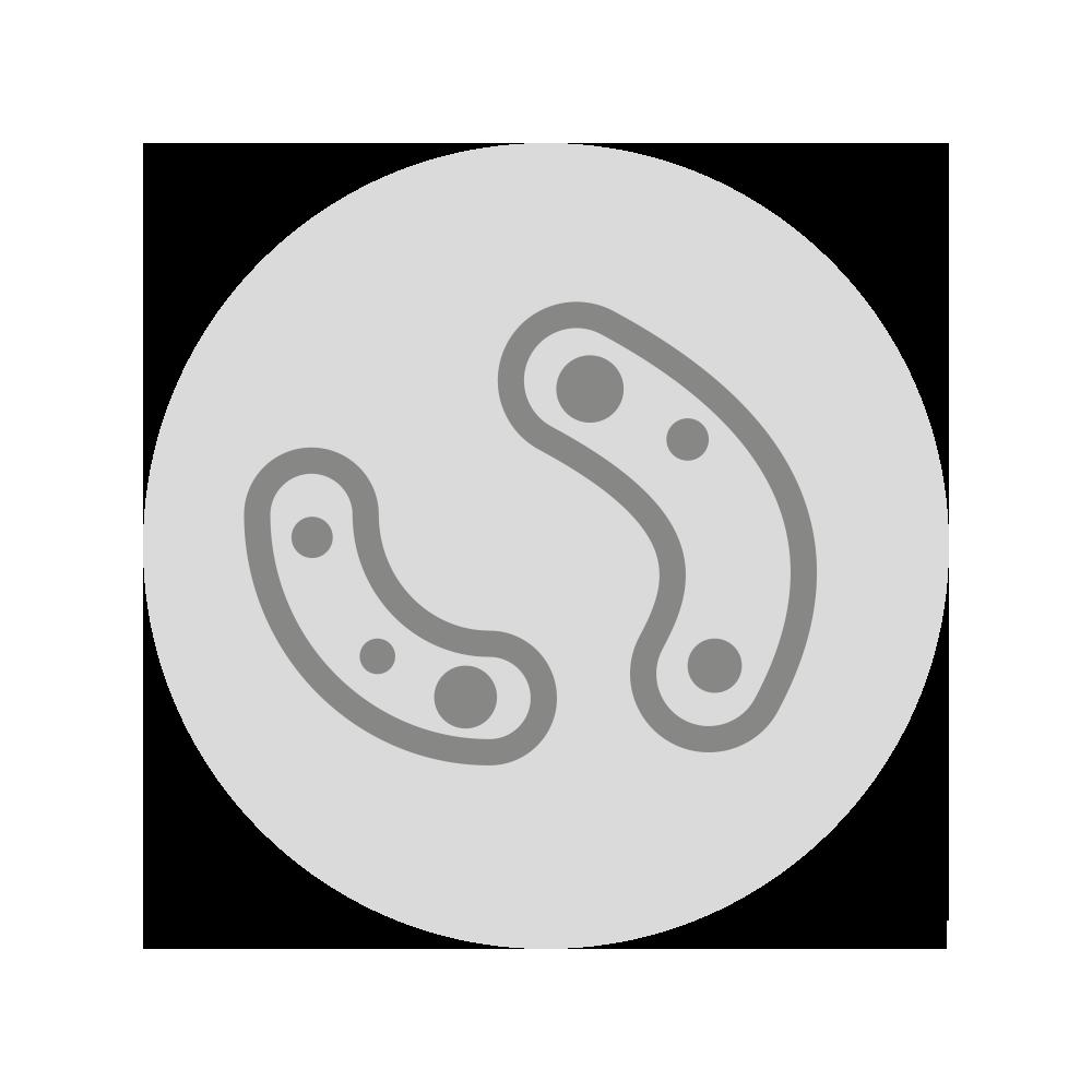 GASTROBACK® - Entfernt effektiv - Bakterien