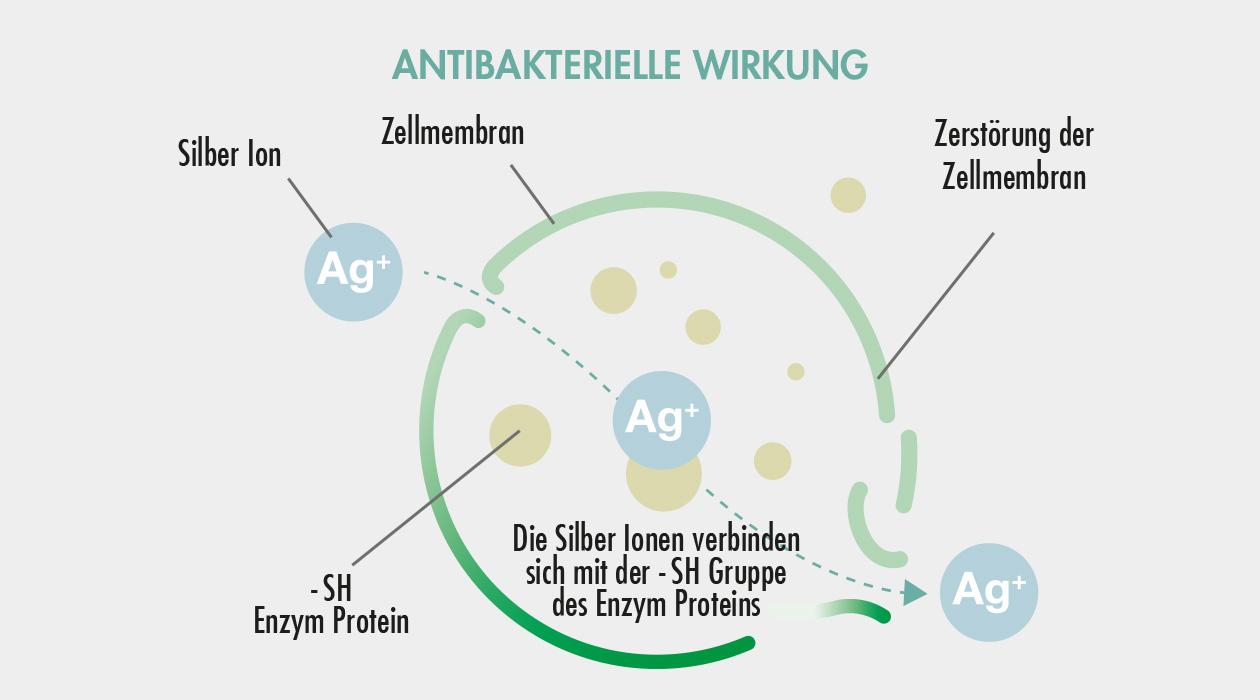 GASTROBACK® Luftreiniger mit AG+ Antiviral Technology - Antibakterielle Wirkung