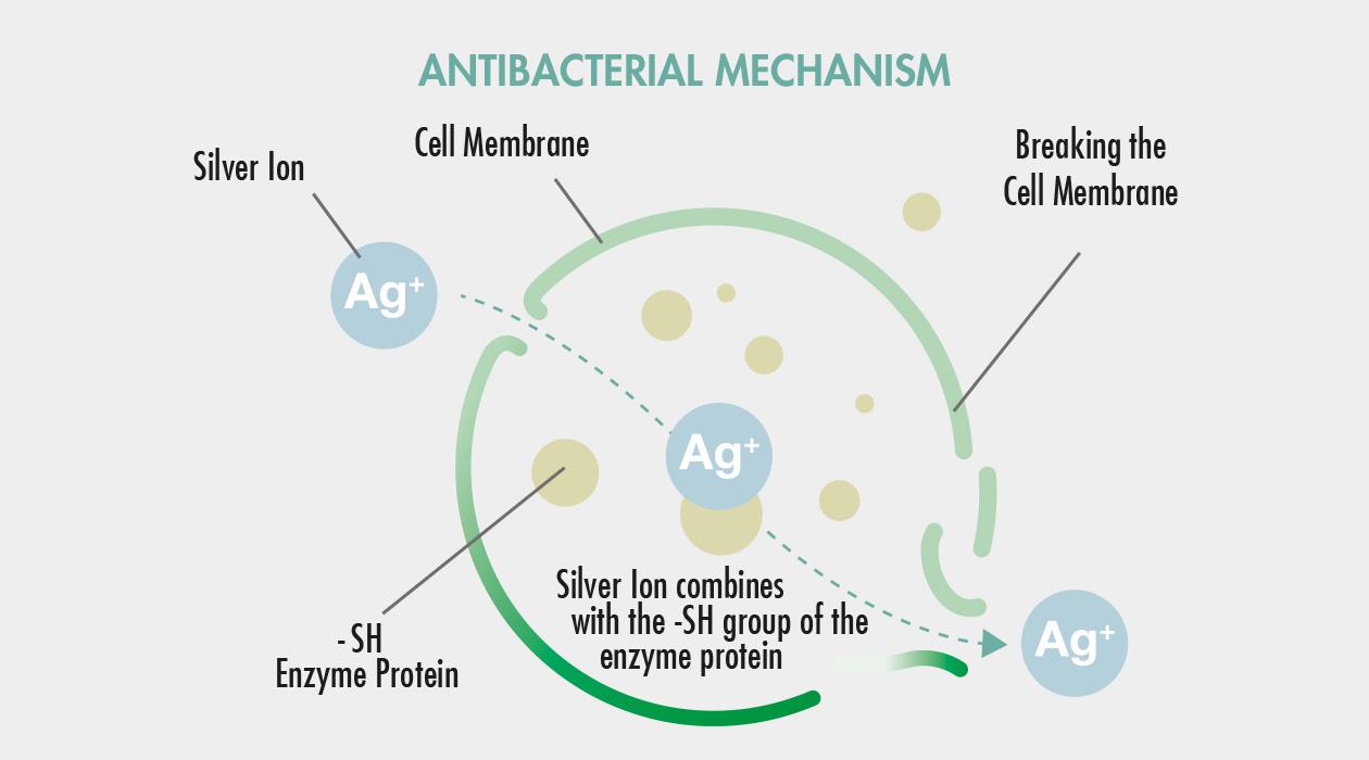 GASTROBACK® Air Purifier AG+ AirProtect - Antibacterial Mechanism